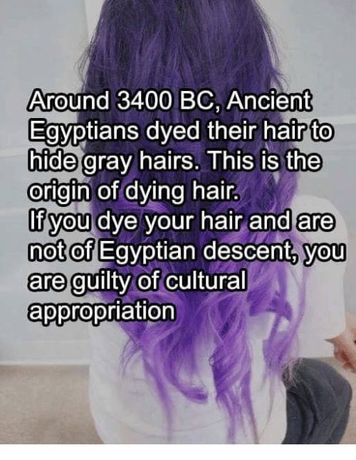 Hair, Dank Memes, and Ancient: Around 3400 BC, Ancient  Egyptians dyed their hair to  hide gray hairs. This is the  origin of dying hair  If you dye your hair and are  not of  Egyptian descent, you  are guilty of  cultural  appropriation