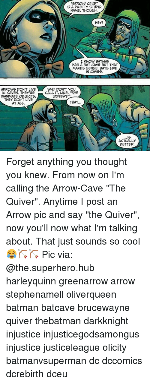 """batcave: ARROW CAVE""""  IS A PRETTY STUPID  NAME, THOUGH.  HEY!  I KNOW BATMAN  HAS A BAT CAVE BUT THAT  MAKES SENSE. BATS LIVE  IN CAVES.  ARROW DON'T LIVE  WHY DON'T YOU  IN CAVES. THEY'RE  CALL IT, LIKE, THE  QUIVER?""""  INANIMATE OBJECTS,  THEY DON'T LIVE  THAT.  AT ALL.  .19  ACTUALLY  BETTER Forget anything you thought you knew. From now on I'm calling the Arrow-Cave """"The Quiver"""". Anytime I post an Arrow pic and say """"the Quiver"""", now you'll now what I'm talking about. That just sounds so cool😂🏹🏹 Pic via: @the.superhero.hub harleyquinn greenarrow arrow stephenamell oliverqueen batman batcave brucewayne quiver thebatman darkknight injustice injusticegodsamongus injustice justiceleague olicity batmanvsuperman dc dccomics dcrebirth dceu"""
