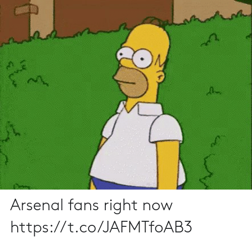 Arsenal, Soccer, and Now: Arsenal fans right now https://t.co/JAFMTfoAB3