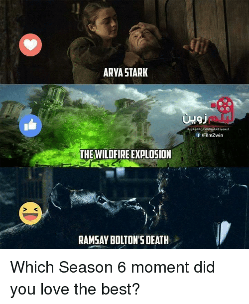 Love, Memes, and Best: ARYA STARK  THE WILDFIRE EXPLOSION  RAMSAY BOLTON'S DEATH  Of IFilmZwin Which Season 6 moment did you love the best?