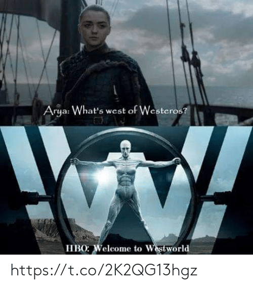 HBO: Arya: What's west of Westeros?  HBO: Weleome to Westworld https://t.co/2K2QG13hgz