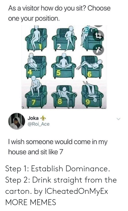 Choose One, Dank, and Memes: As a visitor how do you sit? Choose  one your position.  |4  6  O  7  Joka  @Roi_Ace  I wish someone would come in my  house and sit like 7 Step 1: Establish Dominance. Step 2: Drink straight from the carton. by ICheatedOnMyEx MORE MEMES