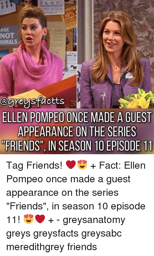 """Friends, Memes, and Ellen: ASE  NOT  NIMALS  ELLEN POMPEO ONCE MADE A GUEST  APPEARANCE ON THE SERIES  FRIENDS"""", IN SEASON 1O EPISODE 11 Tag Friends! ❤️😍 + Fact: Ellen Pompeo once made a guest appearance on the series """"Friends"""", in season 10 episode 11! 😍❤️ + - greysanatomy greys greysfacts greysabc meredithgrey friends"""