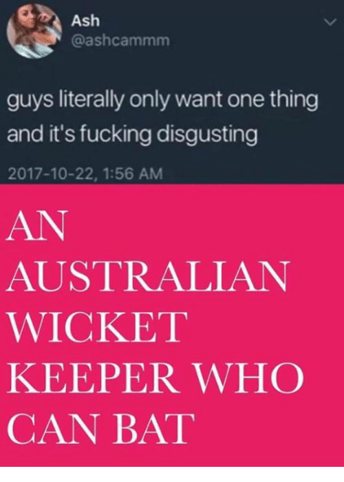 Ash, Fucking, and Australian: Ash  @ashcammm  guys literally only want one thing  and it's fucking disgusting  2017-10-22, 1:56 AM  AN  AUSTRALIAN  WICKET  KEEPER WHC  CAN BAT