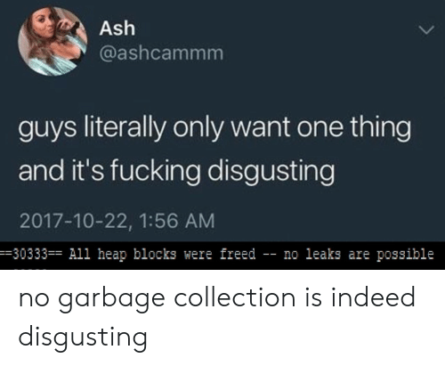 Ash, Fucking, and Indeed: Ash  @ashcammm  guys literally only want one thing  and it's fucking disgusting  2017-10-22, 1:56 AM  -30333 All heap blocks were freed - no leaks are possible no garbage collection is indeed disgusting