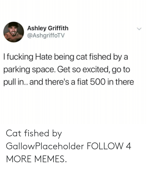 Dank, Fucking, and Memes: Ashley Griffith  @AshgriffoTV  I fucking Hate being cat fished by a  parking space. Get so excited, go to  pull in.. and there's a fiat 500 in there Cat fished by GallowPlaceholder FOLLOW 4 MORE MEMES.