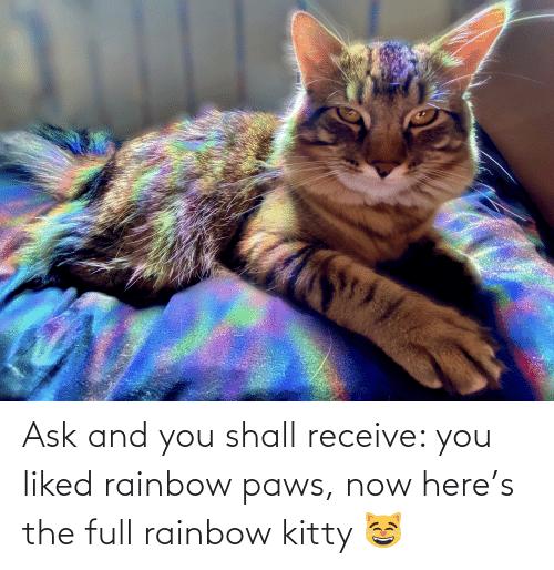 Rainbow: Ask and you shall receive: you liked rainbow paws, now here's the full rainbow kitty 😸