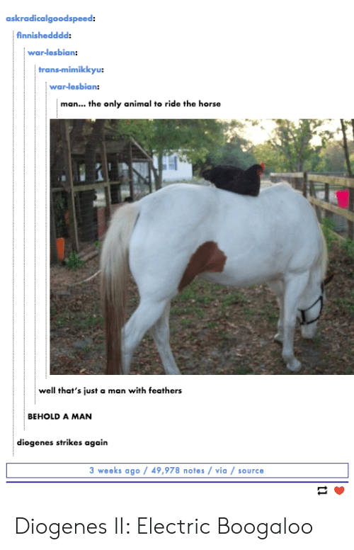 mimi: askradicalgoodspeed:  finnishedddd:  war-lesbian:  trans-mimi  war-lesbian:  man... the only animal to ride the horse  well that's just a man with feathers  BEHOLD A MAN  diogenes strikes again  3 weeks ago 49,978 notes via / source Diogenes II: Electric Boogaloo