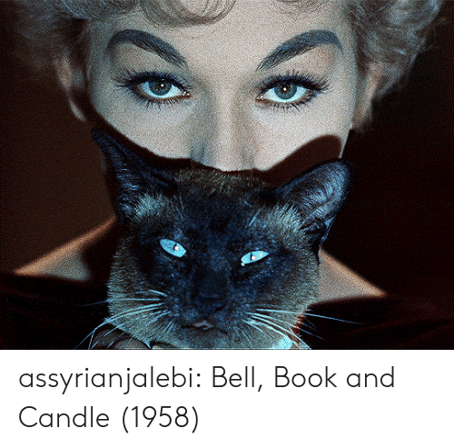 Tumblr, Blog, and Book: assyrianjalebi: Bell, Book and Candle (1958)