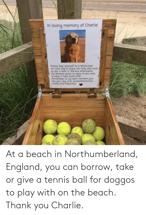 England: At a beach in Northumberland, England, you can borrow, take or give a tennis ball for doggos to play with on the beach. Thank you Charlie.