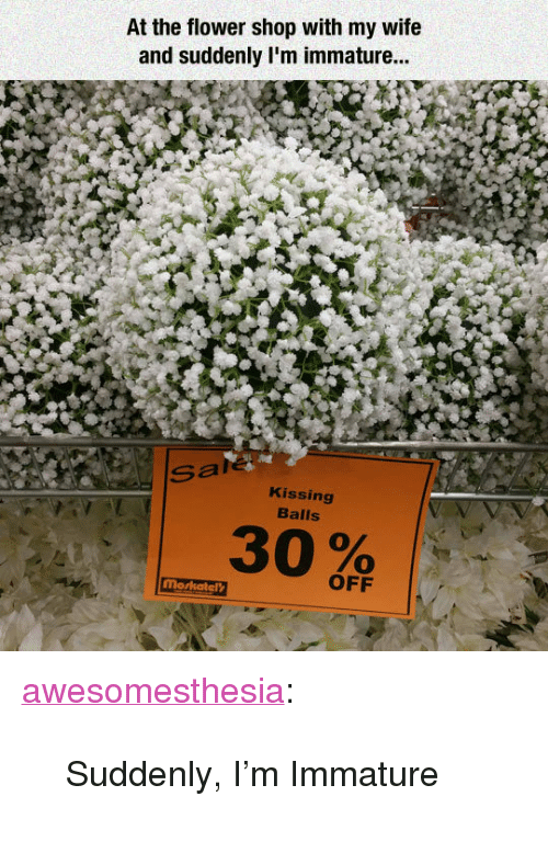 "Tumblr, Blog, and Flower: At the flower shop with my wife  and suddenly I'm immature...  Sale  Kissing  Balls  OFF <p><a href=""http://awesomesthesia.tumblr.com/post/171171227117/suddenly-im-immature"" class=""tumblr_blog"">awesomesthesia</a>:</p>  <blockquote><p>Suddenly, I'm Immature</p></blockquote>"