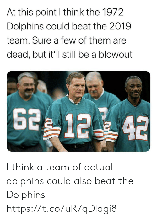at-this-point: At this point I think the 1972  Dolphins could beat the 2019  team. Sure a few of them are  dead, but it'll still be a blowout  2 12 42 I think a team of actual dolphins could also beat the Dolphins https://t.co/uR7qDlagi8