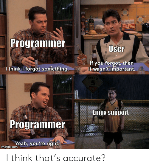 Yeah, Linux, and Com: AtriGrain  Programmer  User  If you forgot, then  it wasn't important  I think I forgot something.  FIELD  5  Linux support  Programmer  Yeah, you're right  imgflip.com I think that's accurate?