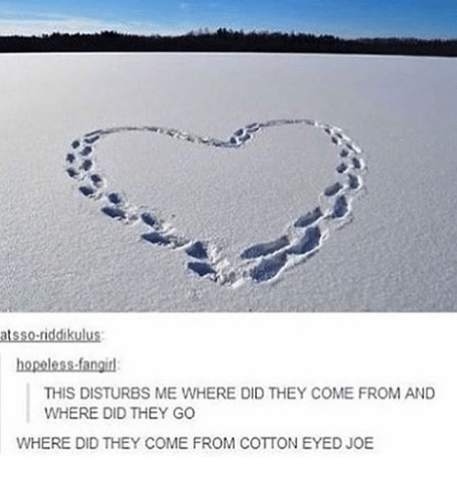 Memes, 🤖, and Disturbed: atsso-riddikulus:  hopeless fangid  THIS DISTURBS ME WHERE DID THEY COME FROM AND  WHERE DID THEY GO  WHERE DID THEY COME FROM COTTON EYED JOE