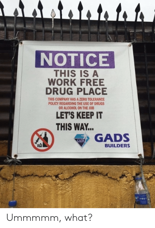 the job: attato to to  NOTICE  THIS IS A  WORK FREE  DRUG PLACE  THIS COMPANY HAS A ZERO TOLERANCE  POLICY REGARDING THE USE OF DRUGS  OR ALCOHOL ON THE JOB  LET'S KEEP IT  THIS WAY...  GADS  GADS  BUILDERS Ummmmm, what?