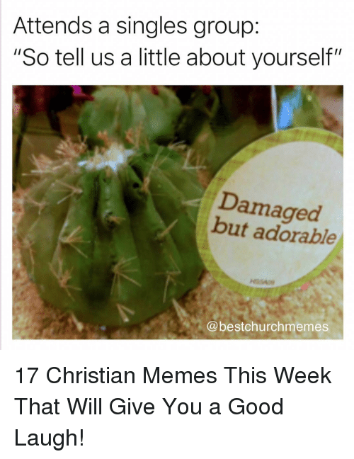 """Memes, Good, and Christian Memes: Attends a singles group:  """"So tell us a little about yourself""""  Damaged  but adorable  @bestchurchmemes 17 Christian Memes This Week That Will Give You a Good Laugh!"""