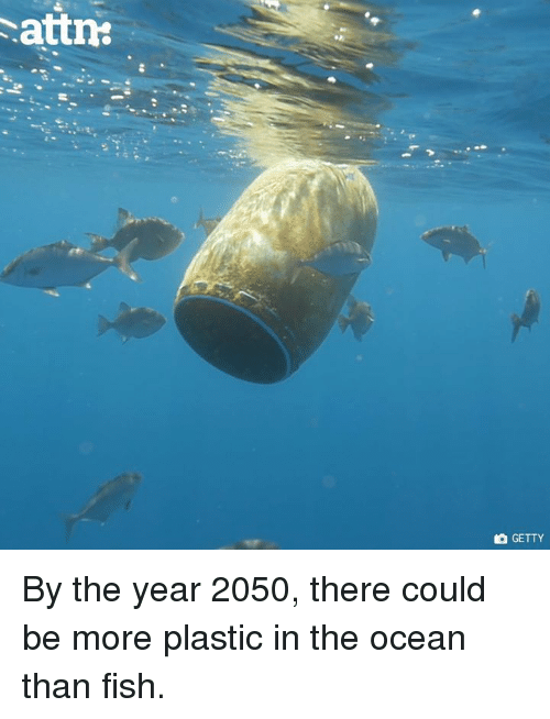 Memes, Fish, and Ocean: attn  GETTY By the year 2050, there could be more plastic in the ocean than fish.
