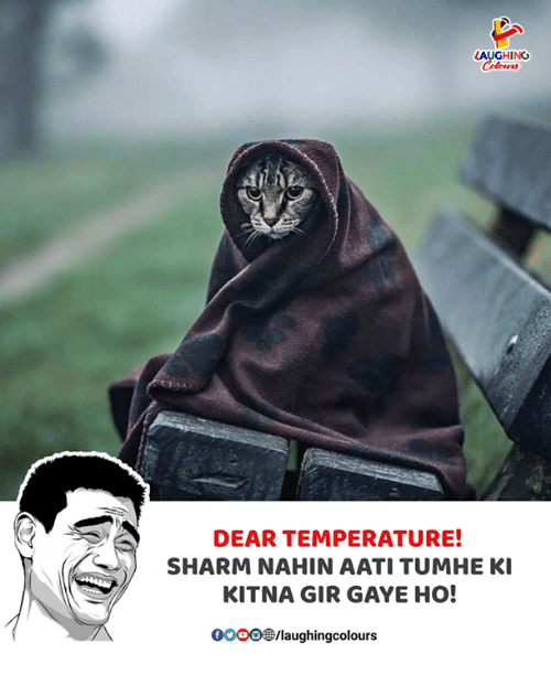Indianpeoplefacebook, Gir, and Dear: AUGHING  DEAR TEMPERATURE!  SHARM NAHIN AATI TUMHE KI  KITNA GIR GAYE HO!  OOOO3/laughingcolours