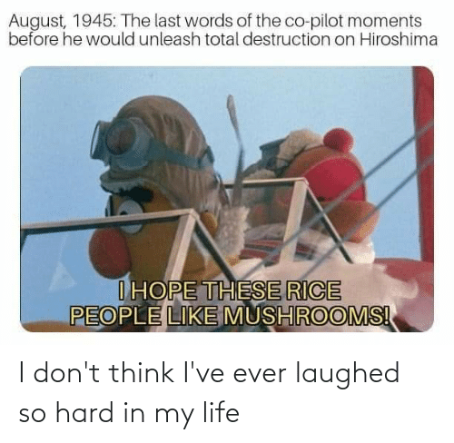Last Words: August, 1945: The last words of the co-pilot moments  before he would unleash total destruction on Hiroshima  IHOPE THESE RICE  PEOPLE LIKE MUSHROOMS! I don't think I've ever laughed so hard in my life