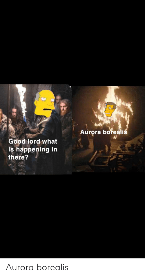 Aurora Boreali Good Lord What Is Happening In There Aurora Borealis Good Meme On Conservative Memes