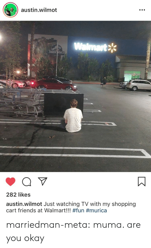 Bilbo, Friends, and Shopping: austin.wilmot  Walmart  282 likes  austin.wilmot Just watching TV with my shopping  cart friends at Walmart!! marriedman-meta:  muma. are you okay