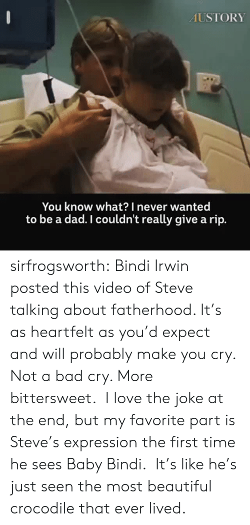 Bad, Beautiful, and Dad: AUSTORY  You know what?I never wanted  to be a dad. I couldn't really give a rip. sirfrogsworth: Bindi Irwin posted this video of Steve talking about fatherhood. It's as heartfelt as you'd expect and will probably make you cry. Not a bad cry. More bittersweet. I love the joke at the end, but my favorite part is Steve's expression the first time he sees Baby Bindi. It's like he's just seen the most beautiful crocodile that ever lived.