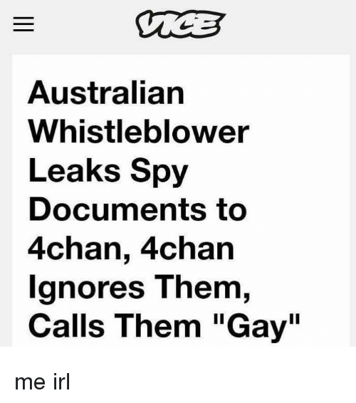 "whistleblower: Australian  Whistleblower  Leaks Spy  Documents to  4chan, 4chan  gnores T hem,  Calls Them ""Gay"" me irl"