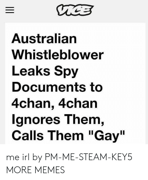 "whistleblower: Australian  Whistleblower  Leaks Spy  Documents to  4chan, 4chan  gnores T hem,  Calls Them ""Gay"" me irl by PM-ME-STEAM-KEY5 MORE MEMES"