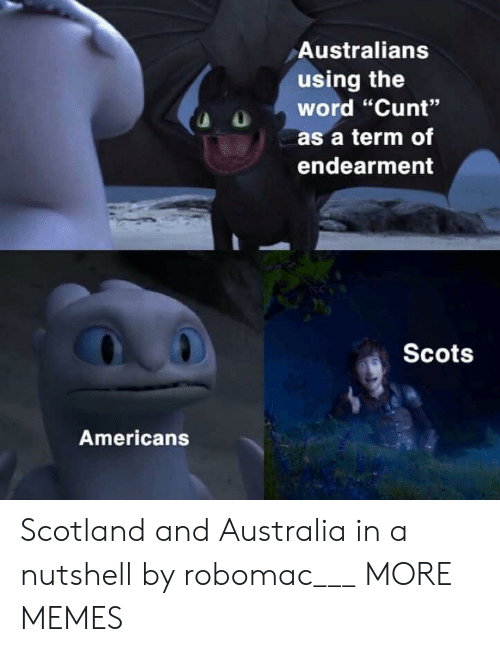 """Dank, Memes, and Target: Australians  using the  word """"Cunt""""  as a term of  endearment  Scots  Americans Scotland and Australia in a nutshell by robomac___ MORE MEMES"""