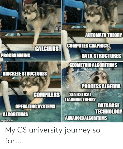 database: AUTOMATA THEORY  COMPUTER GRAPHICS  CALCULUS  PROGRAMMING  DATA STRUCTURES  GEOMETRICALGORITHMS  DISCRETE STRUCTURES  PROCESSALGEBRA  STATISTICAL  LEARNING THEORY  COMPILERS  DATABASE  TECHNOLOGY  ADVANCEDALGORITHMS  OPERATING SYSTEMS  ALGORITHMS  imgflip.com My CS university journey so far…