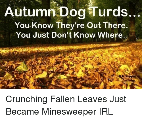 Autumn Dog Turds: Autumn Dog Turds..  You Know They're Out There  You Just Don't Know Where. <p>Crunching Fallen Leaves Just Became Minesweeper IRL</p>