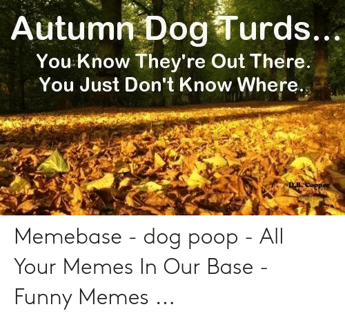 Funny, Memebase, and Memes: Autumn Dog Turds...  You Know They're Out There.  You Just Don't Know Where.  DBCoppor Memebase - dog poop - All Your Memes In Our Base - Funny Memes ...