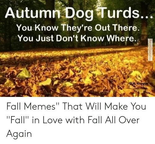 """Autumn Dog Turds: Autumn Dog Turds...  You Know They're Out There.  You Just Don't Know Where. Fall Memes"""" That Will Make You """"Fall"""" in Love with Fall All Over Again"""
