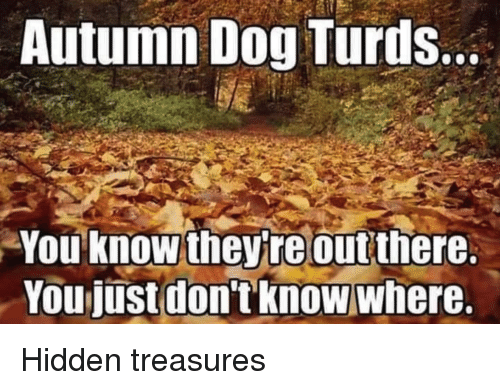 Autumn Dog Turds: Autumn Dog Turds  You know theyteout there  don'tknow  Youjust  where.