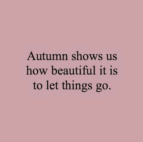 autumn: Autumn shows us  how beautiful it is  to let things go.