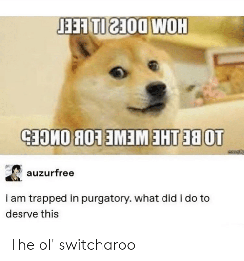 Tumblr, Purgatory, and Did: auzurfree  i am trapped in purgatory. what did i do to  desrve this The ol' switcharoo