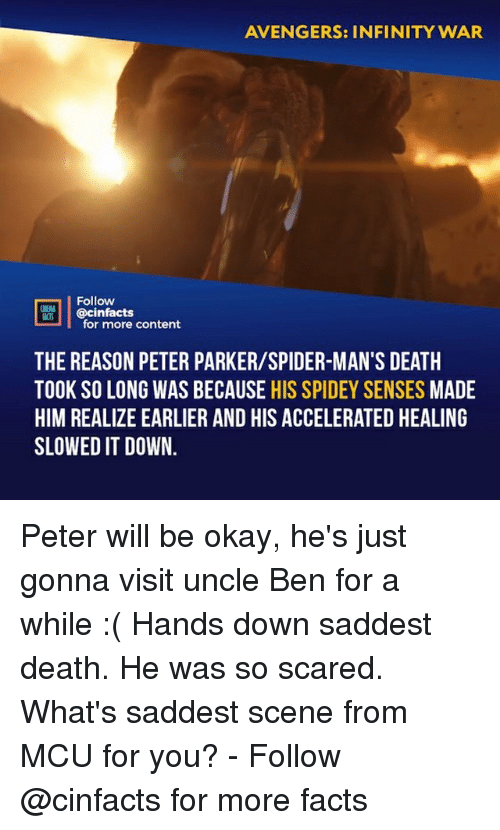Facts, Memes, and Spider: AVENGERS: INFINITY WAR  Follow  @cinfacts  NEAA  for more content  THE REASON PETER PARKER/SPIDER-MAN'S DEATH  TOOK SO LONG WAS BECAUSE HIS SPIDEY SENSES MADE  HIM REALIZE EARLIER AND HIS ACCELERATED HEALING  SLOWED IT DOWN. Peter will be okay, he's just gonna visit uncle Ben for a while :( Hands down saddest death. He was so scared. What's saddest scene from MCU for you?⠀ -⠀ Follow @cinfacts for more facts