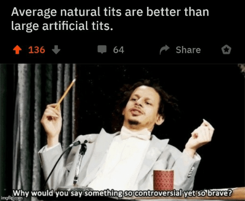 Controversial: Average natural tits are better than  large artificial tits.  會 136  Share  64  Why would you say something so controversial yet so brave?  imgflip.com