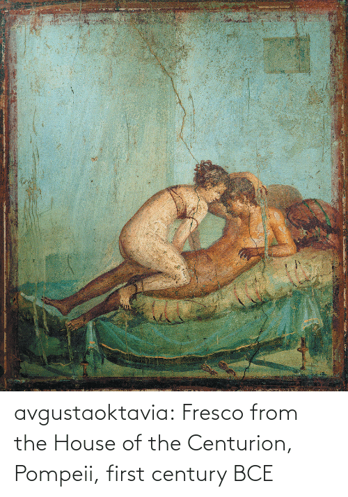 century: avgustaoktavia:   Fresco from the House of the Centurion, Pompeii, first century BCE
