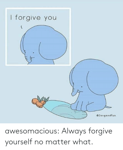 No Matter What: awesomacious:  Always forgive yourself no matter what.