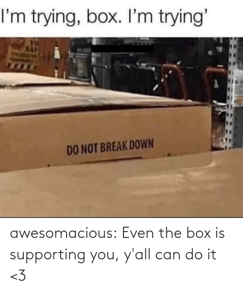 box: awesomacious:  Even the box is supporting you, y'all can do it <3