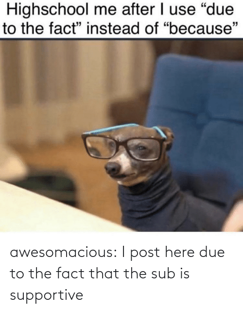 The Fact That: awesomacious:  I post here due to the fact that the sub is supportive