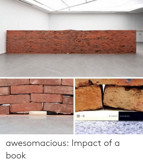 Impactive: awesomacious:  Impact of a book