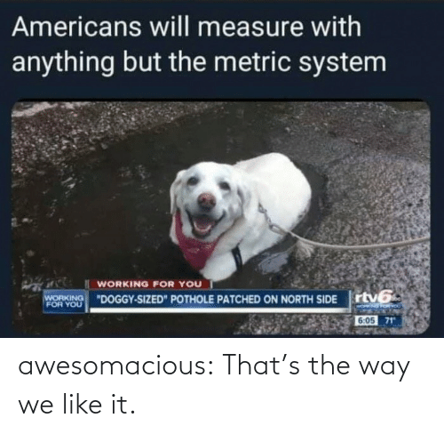 the way: awesomacious:  That's the way we like it.