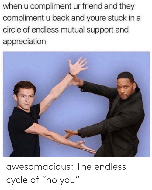 """endless: awesomacious:  The endless cycle of """"no you"""""""