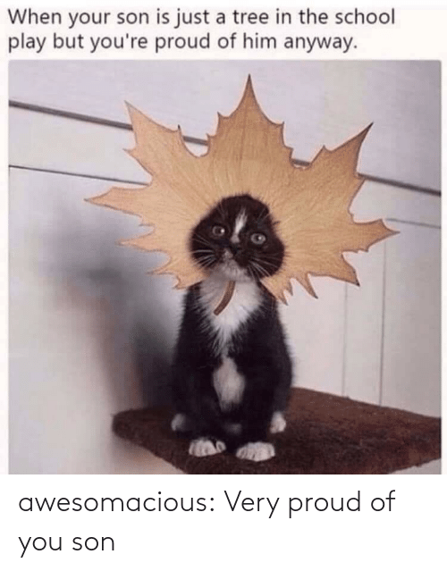 Proud Of You: awesomacious:  Very proud of you son