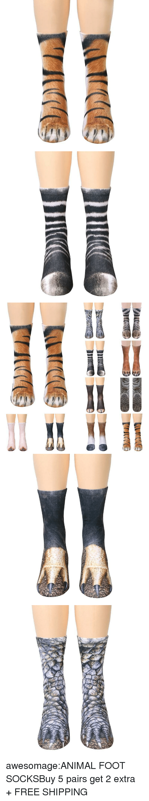 Animals, Children, and Cute: awesomage:ANIMAL FOOT SOCKSBuy 5 pairs  get 2 extra + FREE SHIPPING