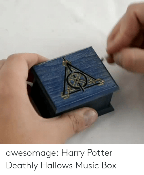 Harry Potter, Music, and Tumblr: awesomage:  Harry Potter Deathly Hallows Music Box