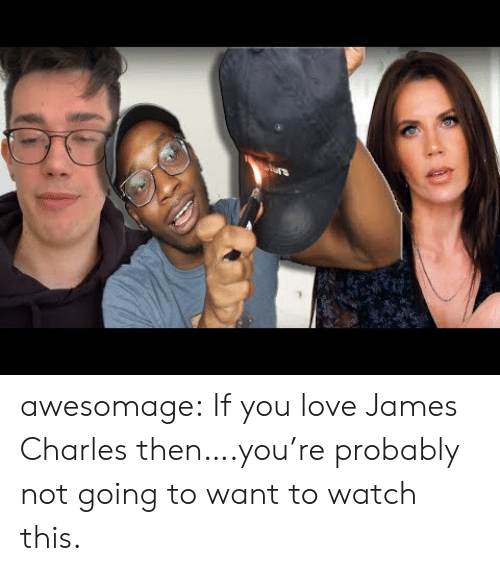 Love, Tumblr, and Blog: awesomage:  If you love James Charles then….you're probably not going to want to watch this.