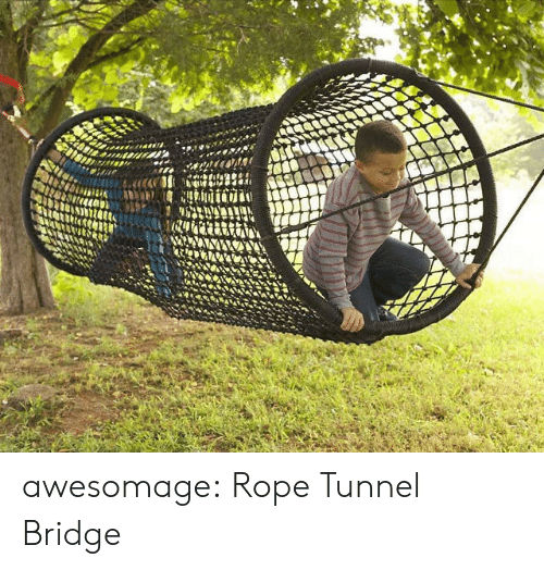 tunnel: awesomage:  Rope Tunnel Bridge